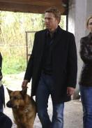 Inspektor Rex, sezona 1 - epizoda 3